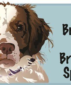 Brittany Spaniel Onesie or Tee