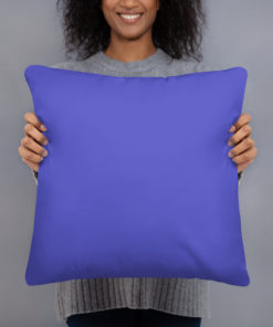 Our Friendship Isn't a Big Thing -Throw Pillow